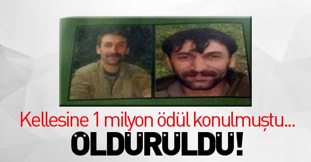 1 milyon lira ödüllü terörist öldürüldü!