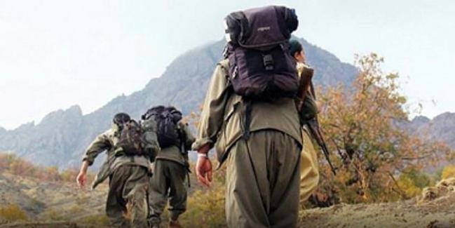 Alçı: PKK'ya desteği çözüm süreci kesti!