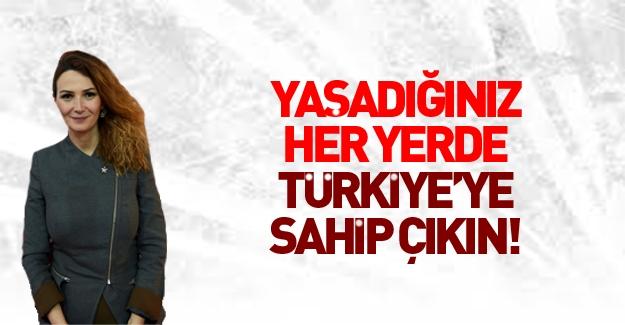 Azerbaycanlı vekilden flaş 'Türkiye' çağrısı