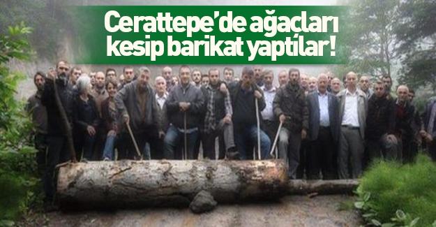 Cerattepe'de polisin yolunu kesmek için ağaç kestiler