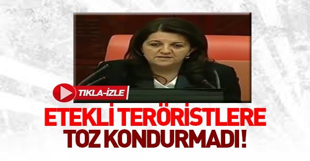 HDP'li Pervin Buldan'dan skandal sözler
