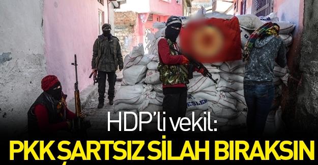 HDP'li vekilden flaş çıkış: PKK kayıtsız şartsız silah bıraksın