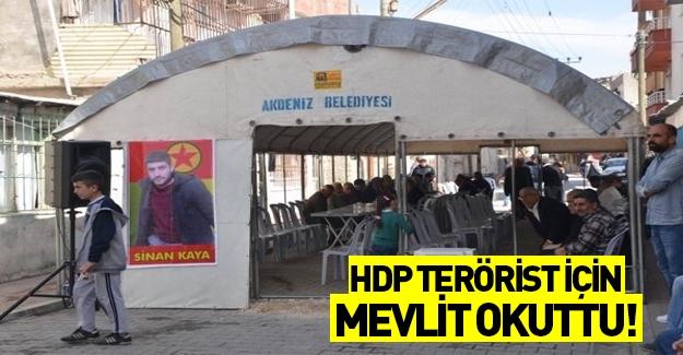 HDP Mersin'de öldürülen terörist için mevlit okuttu