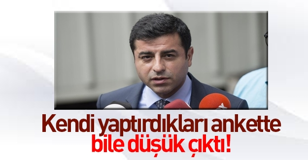 HDP üç farklı şirkete anket yaptırdı, şoke oldu!