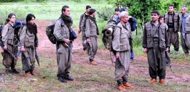 'Kandırıldık teslim oluyoruz' diyen 30 PKK'lı...