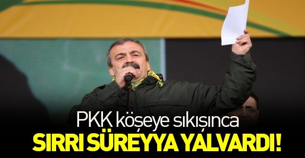 PKK köşeye sıkıştı, Sırrı 'çatışmasızlık' için yalvardı