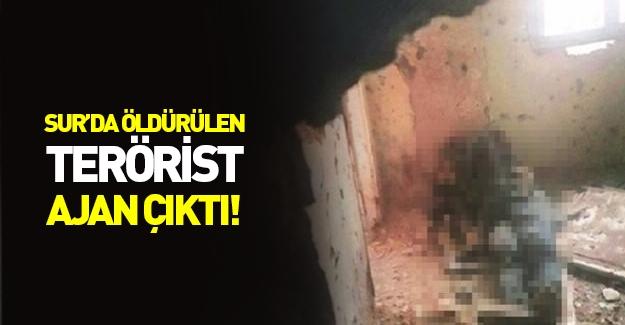 Sur'da öldürülen terörist bakın kimin ajanı çıktı!