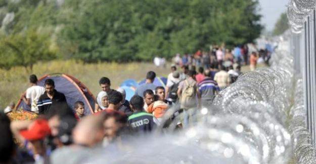Macaristan mültecileri engellemek için şimdi de sınırına tel örgü çekiyor