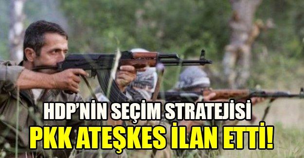 HDP'nin seçim stratejisi! PKK tek taraflı ateşkes ilan etti