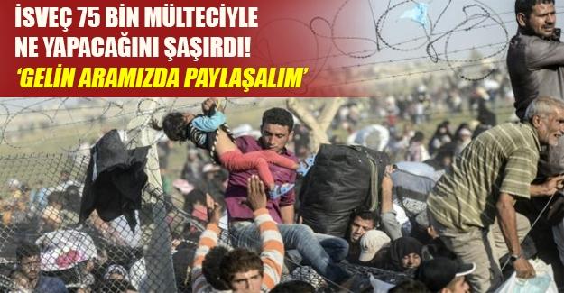 """75 bin mülteciyle çaresiz kalan İsveç AB'ye seslendi: """"Gelin aramızda paylaşalım"""""""