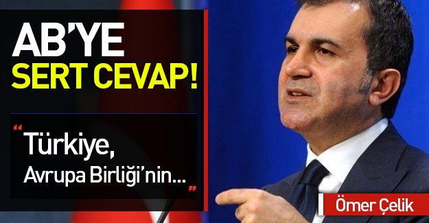 Çelik: Türkiye Avrupa Birliği'nin protezi değildir!