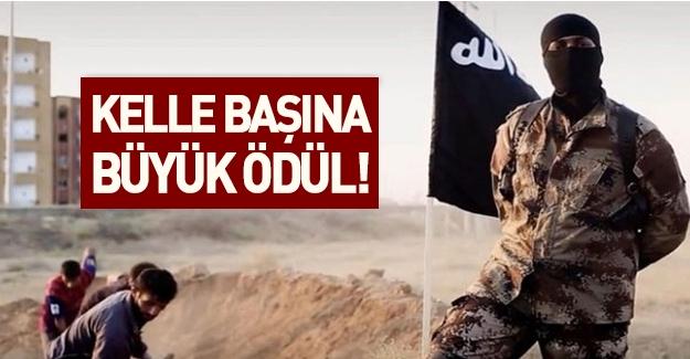 IŞİD liderlerinin kellesine büyük ödül! ABD kesenin ağzını açtı