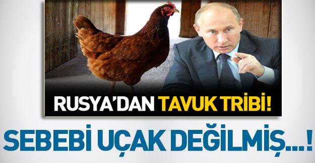 İşte Rusya'nın beyaz et ihracatını yasaklamasının sebebi!
