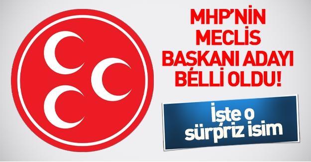 MHP'nin Meclis Başkan Adayı Yusuf Halaçoğlu