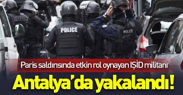 Paris saldırısında etkin rol oynayan IŞİD militanı Antalya'da yakalandı!