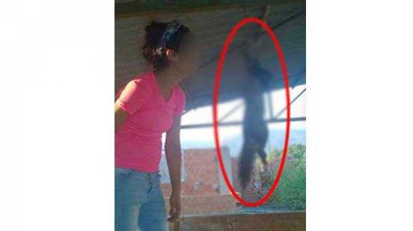 Sevgilisine kediyi ipe asarak mesaj veren kızdan hayvanseverler şikayetçi oldu!