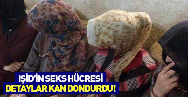 IŞİD'in seks hücresi kan dondurdu! Ezidi kadınlar zindanlarda bulundu