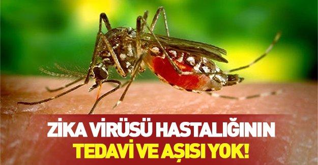 ABD'den korkutan 'Zika' virüsü açıklaması