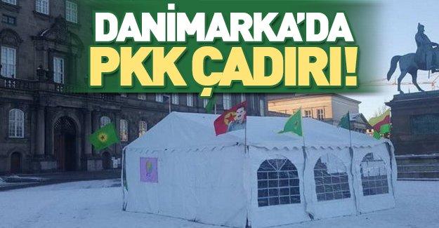 Danimarka'da terör propagandası!
