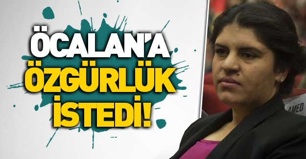 Dilek Öcalan: Abdullah Öcalan serbest bırakılsın