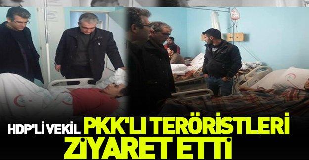 HDP'li vekil PKK'lı teröristleri ziyaret etti