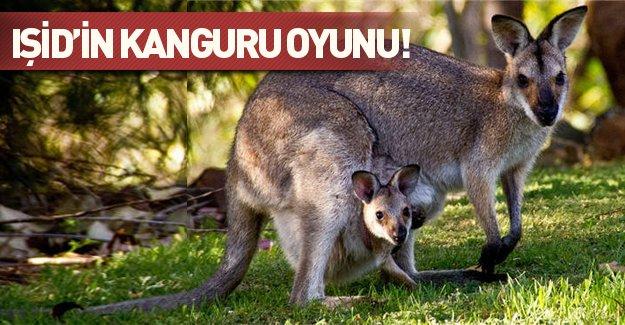 """""""IŞİD'ci"""" kanguru katliam yapacaktı!"""
