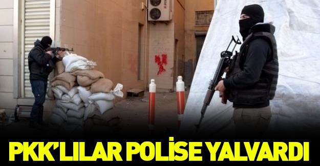 PKK'lı teröristler pes etti!