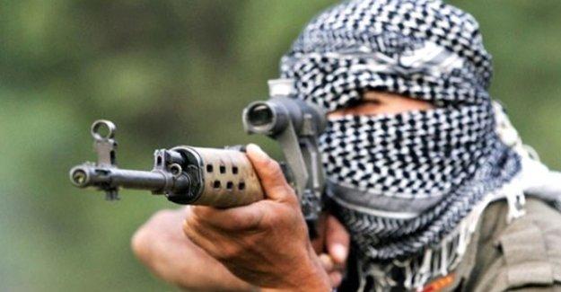 PKK'lılar kendilerini ihbar eden iki sivili infaz etti