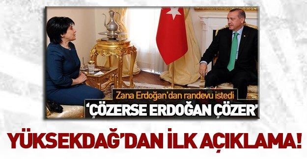 Yüksekdağ'dan Erdoğan-Zana açıklaması