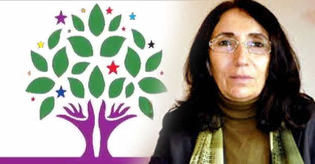 HDP'li vekil elektrik faturasına itiraz etti!