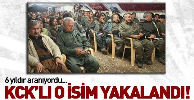 KCK'nın tepe ismi Mustafa Sarıkaya yakalandı!