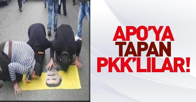 Kobani'de PYD'liler Apo bayrağını öptü