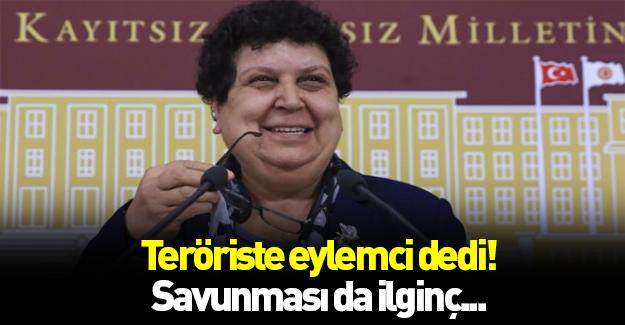 Teröriste eylemci diyen CHP'li kendini savundu!
