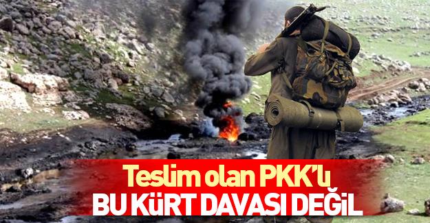 Teslim olan PKK'lıdan itiraf: Kürt davası değil