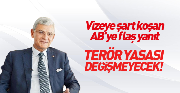 AB Bakanı Volkan Bozkır: Terör yasası değişmeyecek