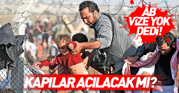 AP Başkanı: Türkiye'yi vize serbestisi yok