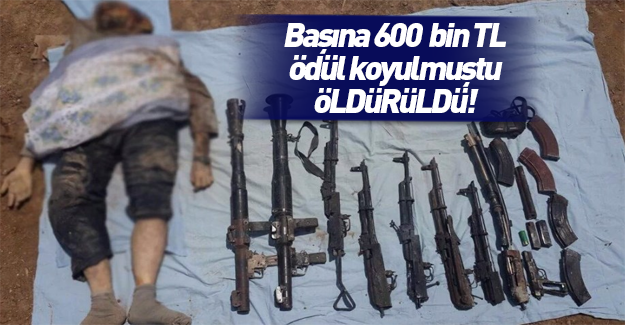 PKK'nın Nusaybin sorumlusu öldürüldü