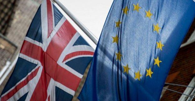 İngiltere'de referandum imzalarında skandal