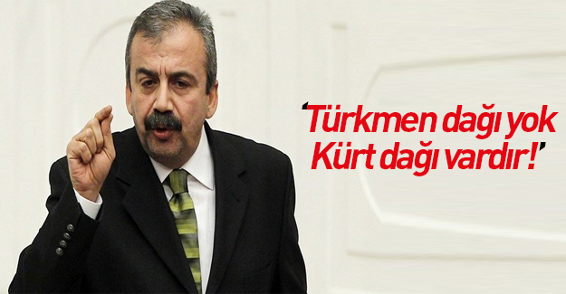 Sırrı Süreyya Önder'den Kürt Dağı çıkışı