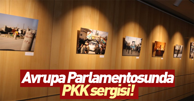 Avrupa Parlamentosu'nda PKK sergisi