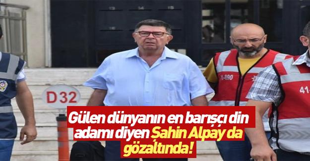 Şahin Alpay gözaltına alındı