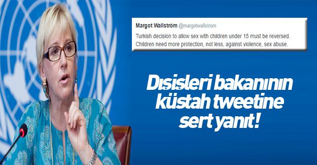 İsveç Dışişleri Bakanı'ndan aşağılık sözler