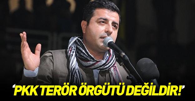 Demirtaş: PKK'yı terör örgütü olarak tanımlamıyoruz