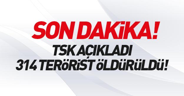 TSK açıkladı: 314 terörist öldürüldü