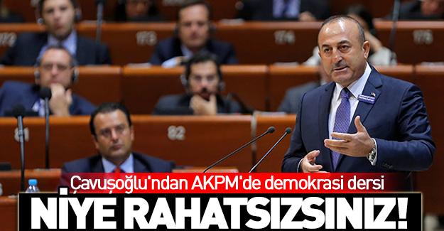 Çavuşoğlu AKPM'de demokrasi dersi verdi