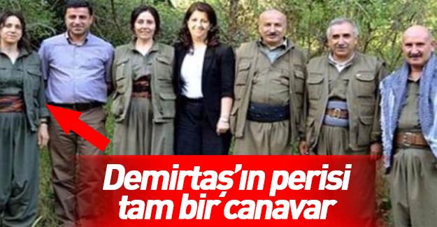 "Demirtaş'ın canavar ruhlu ""perisi"""