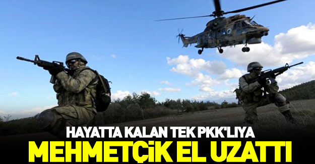 Mehmetçik kadın teröriste el uzattı!