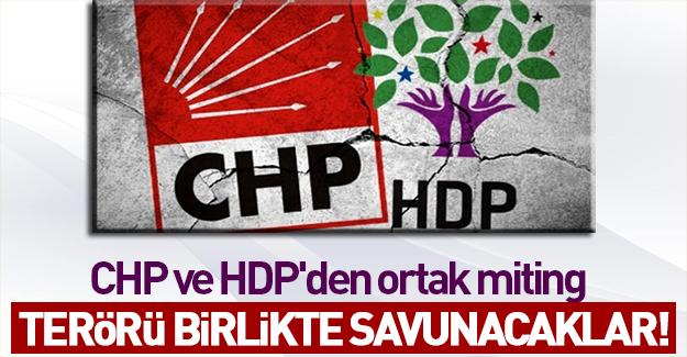 CHP ve HDP'den terör kardeşliği mitingi!