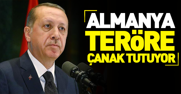 Erdoğan'dan Almanya'ya tepki!