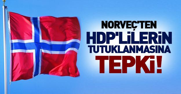Norveç'ten HDP'lilerin tutuklanmasına tepki